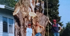 Anvid's Tree Service - Alborn, MN