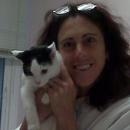 Cat Care Clinic of the Nyacks
