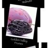 Golden Valley Fruit Packing, Inc.