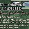 Mountain Laurel Kennels