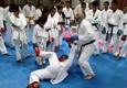 Bushido Karate Shotokan USA - Raleigh, NC
