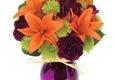 New Smyrna Beach Florist Inc - New Smyrna Beach, FL