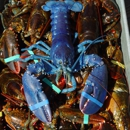 Skip's Dock: Seafood Market