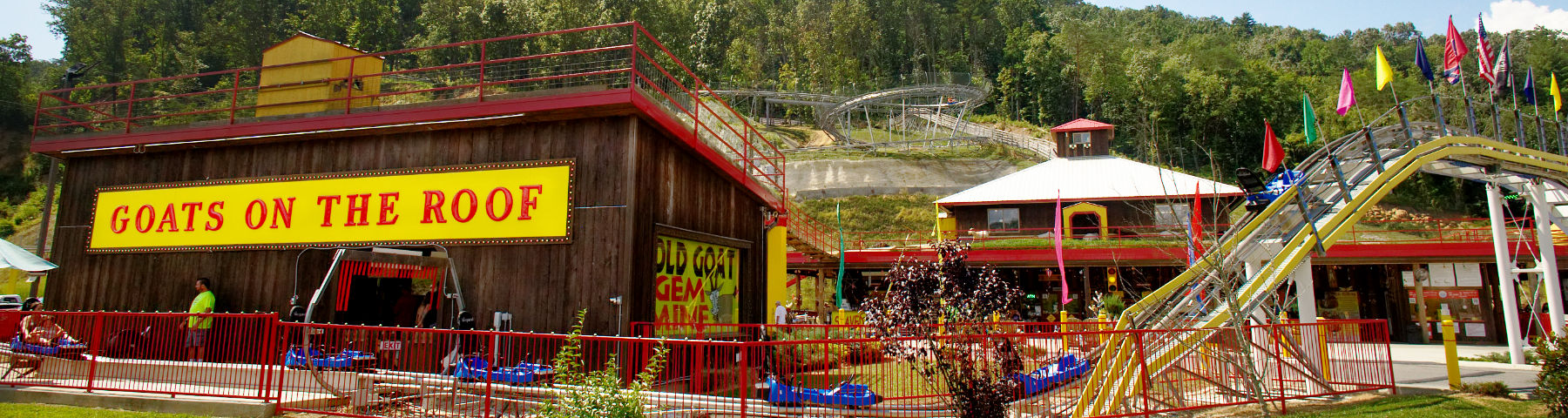The Coaster At Goats On The Roof 1341 Wears Valley Rd