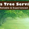 Sherman Oaks Tree Service