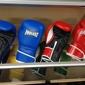 PRO Fight Shop - Los Angeles, CA