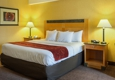Comfort Suites Southpark - Colonial Heights, VA