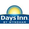 Dog Days Inn