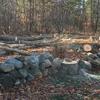 New Hampshire Arbor Works