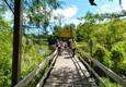 Wild Bill's Airboat Tours - Inverness, FL