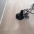 The Steam Team Carpet Cleaning