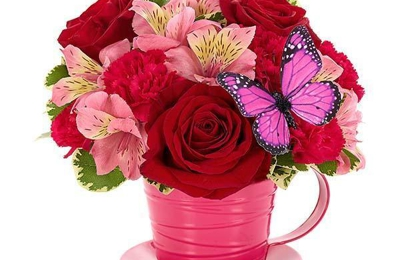 Steele-Cooter Flower Gift-Btq - Steele, MO