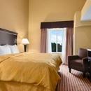 Comfort Suites-DFW Airport