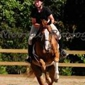 Rolling Hills Farm Equestrian Center - Friendsville, TN