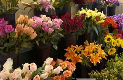 Flowers And More 200 W Alice St Bainbridge Ga 39819 Yp Com