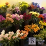 Flower Express Inc - Nashville, TN