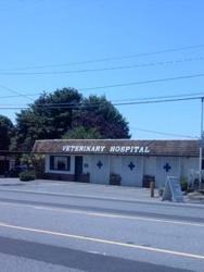 South Seattle Veterinary Hospital