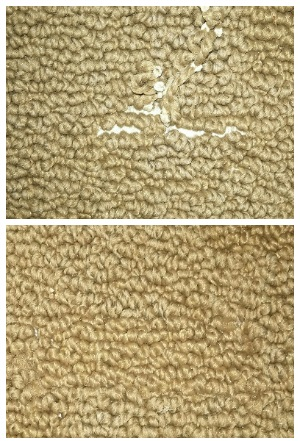 Carpet Repair The Carpet Guy St Paul Mn