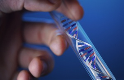 Legal DNA Paternity Genetic Testing