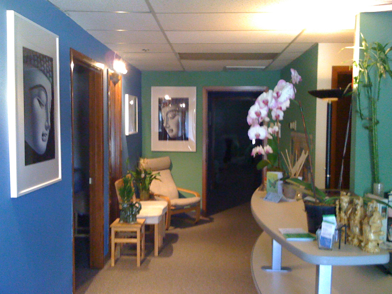 Living Room Acupuncture San Jose CA 95131