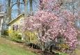 Orchard Inn - Saluda, NC