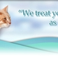 Dog & Cat Surgery and Wellness Clinic - Batavia, NY