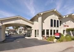 Ramada Olive Tree - San Luis Obispo, CA