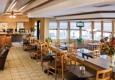 Quality Inn & Suites Albuquerque Downtown - University - Albuquerque, NM
