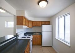 Pangea Vistas Apartments - Indianapolis, IN