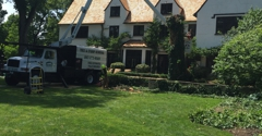 Eddy's Tree Service - Round Lake Beach, IL. tree removal