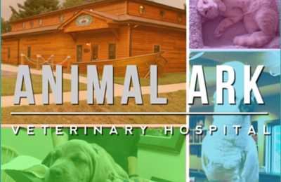 Animal Ark Veterinary Hospital - Clemmons, NC