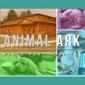 Animal Ark Veterinary Hospital - Clemmons, NC