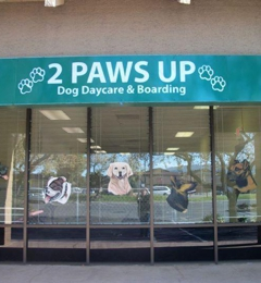 2 Paws Up Dog Day Care - San Jose, CA