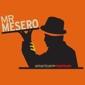 Mr Mesero - Dallas, TX