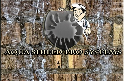 Aqua Shield Pro Systems - Nashville, TN