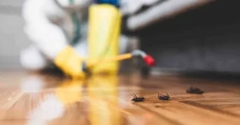 Piper Pest Control Inc