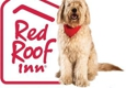 Red Roof Inn - New Braunfels, TX