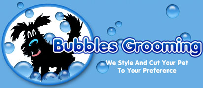 Bubbles Pet Grooming and dog teeth cleaning