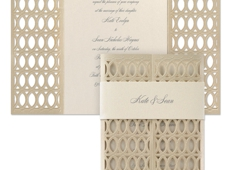 Unique Invitations By Deborah - Philadelphia, PA. Infinite Beauty - Laser cut wrap of invitation with a belly band around wrap.  Very elegant.