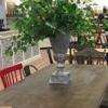 Cafe Belle Madeleine