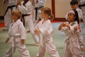 learn tae kwon dostyle=