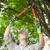 Marshall Tree Experts