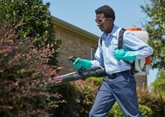 HomeTeam Pest Defense - Tempe, AZ