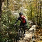 Pisgah Mountain Bike Adventures - Asheville, NC