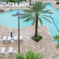 Holiday Inn Orlando-Disney Springs™ Area - Orlando, FL