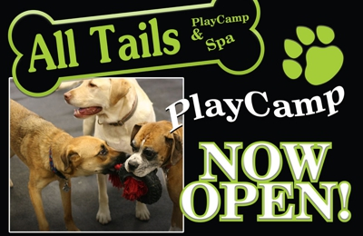 All Tails R Waggin' - Pataskala, OH