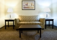 Holiday Inn Express & Suites Dallas Ft. Worth Airport South - Irving, TX