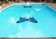Savannah Pools - Valley Park, MO