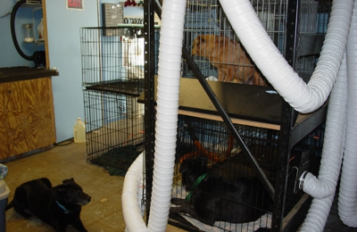 Hundgrumer's Pet Salon - Lugoff, SC