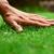 Swingle Lawn Tree & Landscape Care
